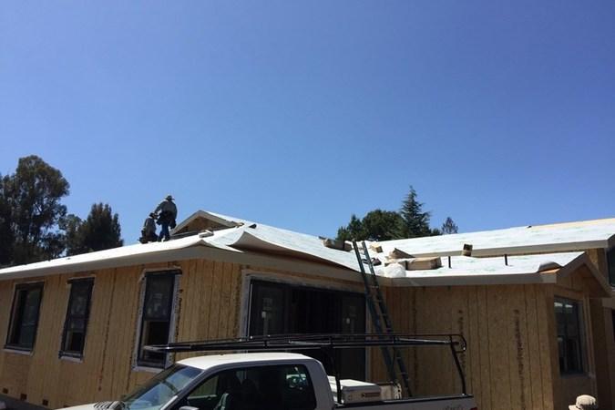 Blue oak  roof paper